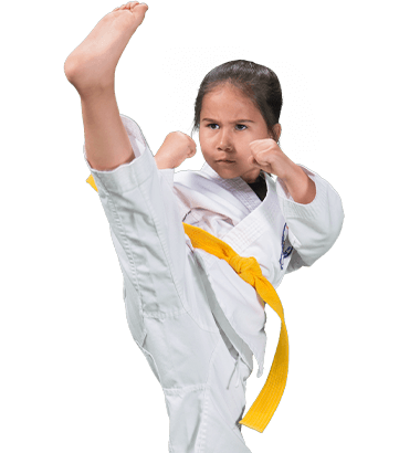 Adult Martial Arts Taekwondo tournament